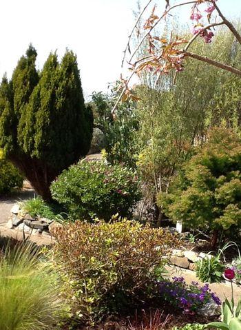 Sky's Garden