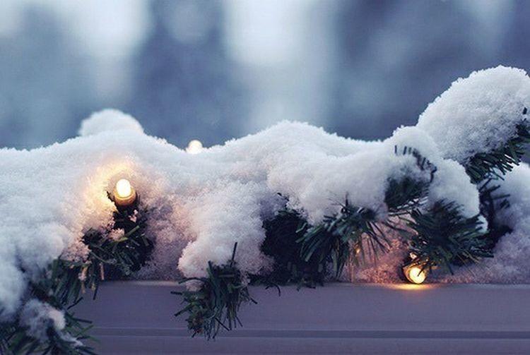 Snowy Coldinteresting