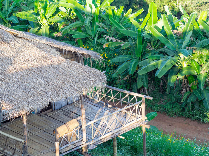 Bamboo house in