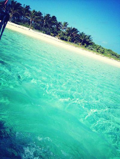 The Paradise Where I Live *-*