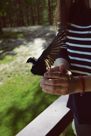 Bird Ready For Flight Bird Photography Birds Of EyeEm  Take Photos Birds Flying High Swallow Chack This Out Let It Free
