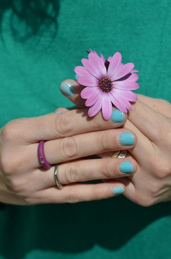 Flower Flowers Spring Flowers Flowers, Nature And Beauty Hand Handyphoto Hands Springtime Spring Springflowers