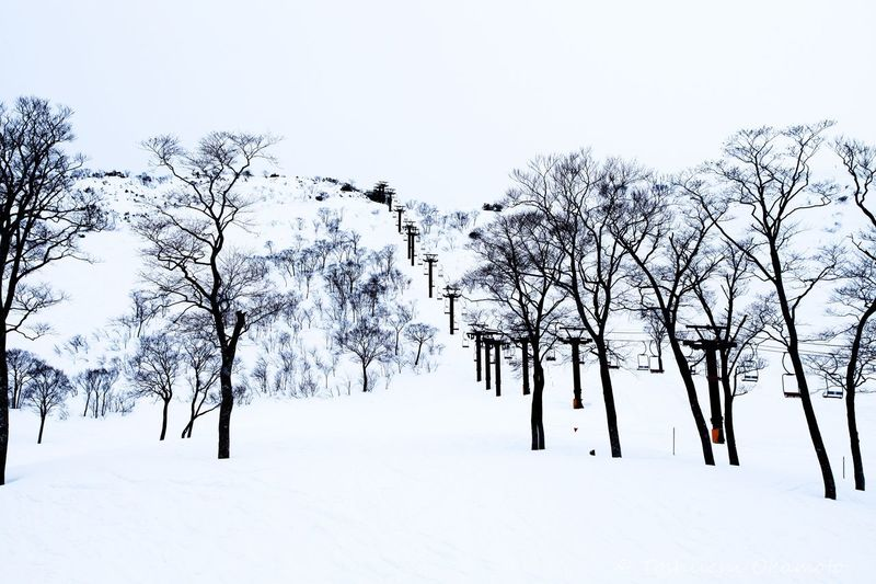 谷川岳 Snow Snow Day Nature Relaxing White