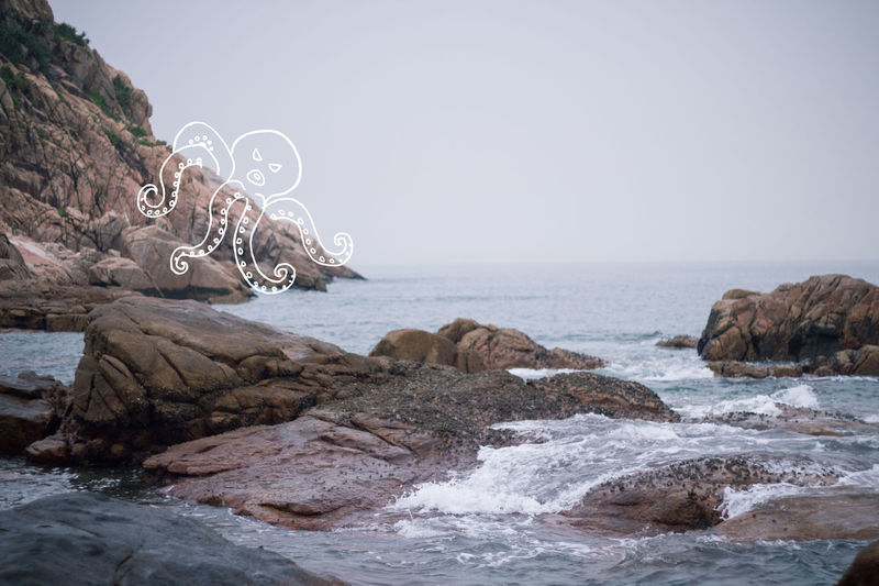 Beautiful Creativity Fun Monster Nature Octopus Outdoors Photography Sea Sketch