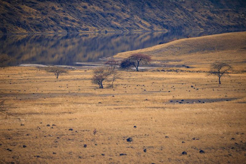 View of a desert, lake magadi, kenya