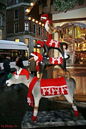 Xmas market in Bremen Bremen City Christmasmarket Xmasdecoration Streetphotography