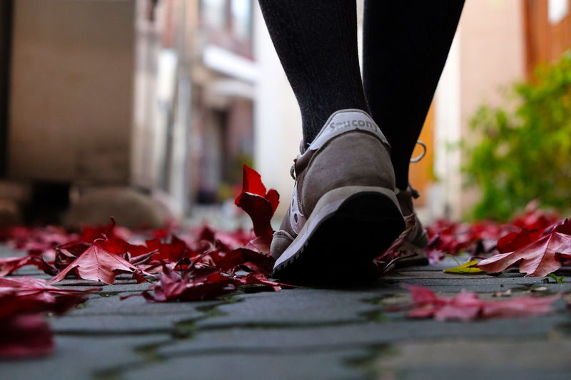 Shoe Move Selective Focus Red Real People Outdoors One Person Nature Low Section Low Angle Lifestyles Leaf Human Leg Human Body Part Fragility Day Close-up Change Autumn Walking Around Moving Low Angle View Connected By Travel EyeEmNewHere Love Yourself