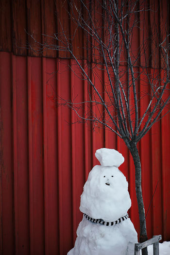 Snowman By Bare Tree