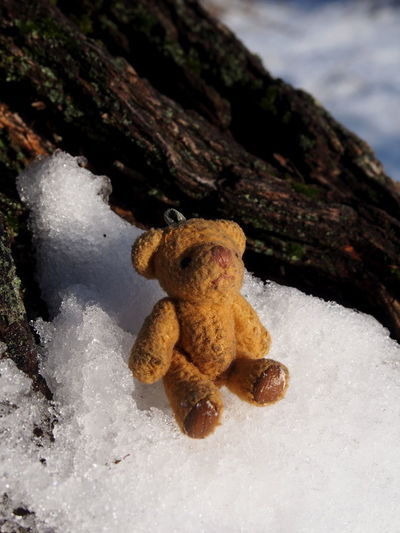 Toy No People Snow Close-up Cold Temperature Nature Stuffed Toy Winter Day Representation Teddy Bear Land Focus On Foreground Rock Still Life Animal Rock - Object Animal Representation Outdoors