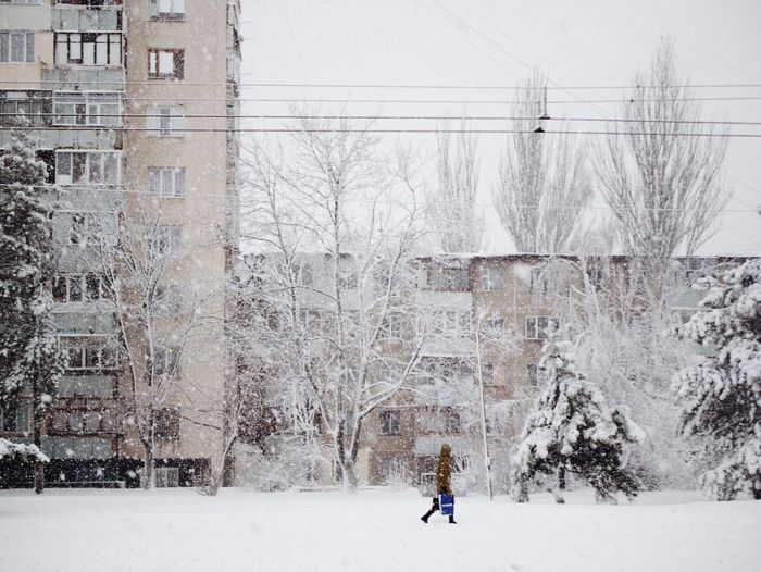 Snowy morning in Chisinau The Week on EyeEm Winter Morning Snow Covered Snow In The City Winterscapes Winter Snow Cold Temperature Outdoors Day One Person Beauty In Nature City Snowing Shades Of Winter Stories From The City Streetwise Photography