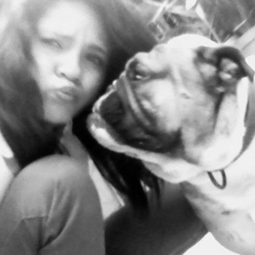 Uno_besito Bulldog