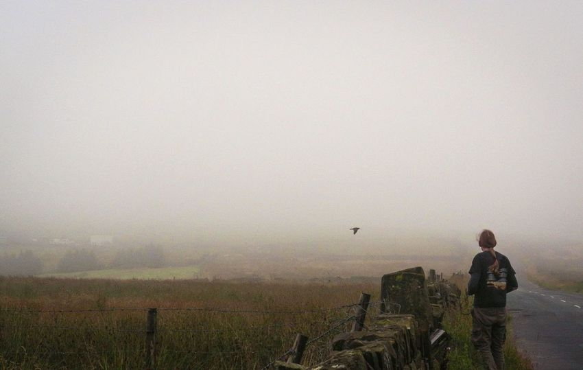 This was the first time I'd seen a curlew. It posed for quite some time before flying off to find its mate. Fog One Person One Man Only Adults Only Adult Only Men People Outdoors Full Length Nature Flying Day Sky Beauty In Nature Animal Themes Curlew Bird Wildlife Nature Landscape Breathing Space