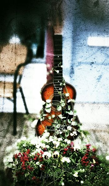 guitar Flowers Creatively Thesmallestlittlethings Happigramma EyeEm Best Shots Picturesareeverywhere Summertimesplendor Nikon Photography Tunein