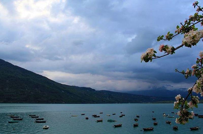 Lago Santacroce Belluno Lake Italy Barche Boats Fiori Primavera Spring Acqua Water Liqen Varka Lulepranverore