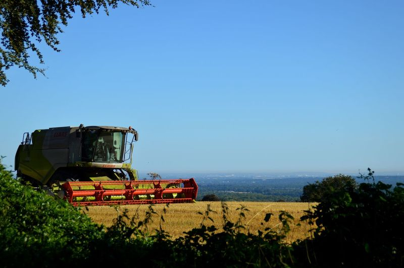 Combine Harvester on the Hill Horizon Over Land EyeEmNewHere EyeEm Best Shots EyeEm Nature Lover EyeEm Gallery EyeEm Best Shots - Nature Beauty In Nature Focus On Foreground Farming Sunbeam Combine Harvester Clear Sky Rural Scene Working Tree Agriculture Blue Flower Agricultural Machinery Field Agricultural Equipment Commercial Land Vehicle