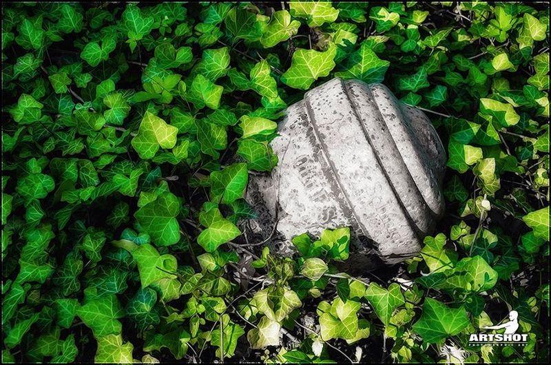 Urne Friedhof Street Photography ArtWork Light And Shadow Still Life Light Urban Darkness And Light Colorkey Dark