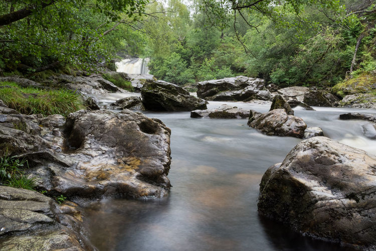 The river Falloch Water Tree Rock Forest Plant River Nature Scenics - Nature Rock - Object Solid No People Beauty In Nature Land Flowing Water Tranquility Day Flowing Tranquil Scene Environment Outdoors Stream - Flowing Water