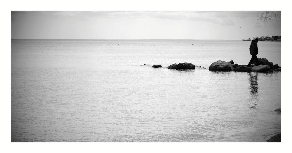 Early spring at Lake Ontario. Reflections Horizon Outdoors Horizon Over Water Silhouette Water Beach Bird Scenics Nature Nikon D3200 Relaxing From My Point Of View Black And White Black And White Landscape Black And White Collection  Black And White Photography Welcome To Black The Great Outdoors - 2017 EyeEm Awards BYOPaper!