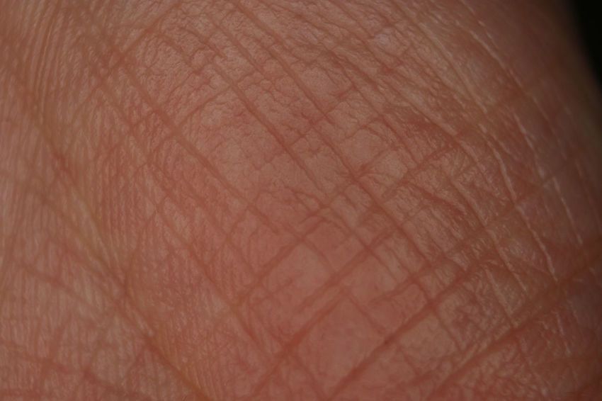 Skin Adult Adults Only Background Day Fingerprint Human Body Part Human Finger Human Hand Human Skin Indoors  Lifestyles One Man Only One Person People Real People Sensory Perception Texture Unrecognizable Person Skin Rills Backgrounds