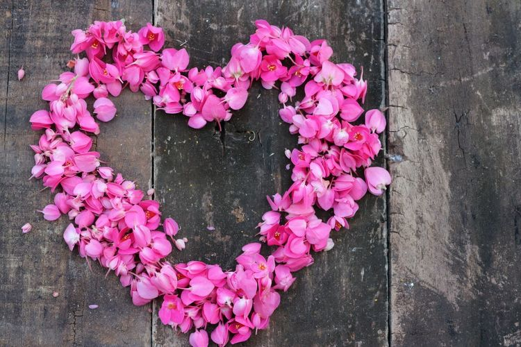 Directly above shot of pink heart shaped flowers on wood