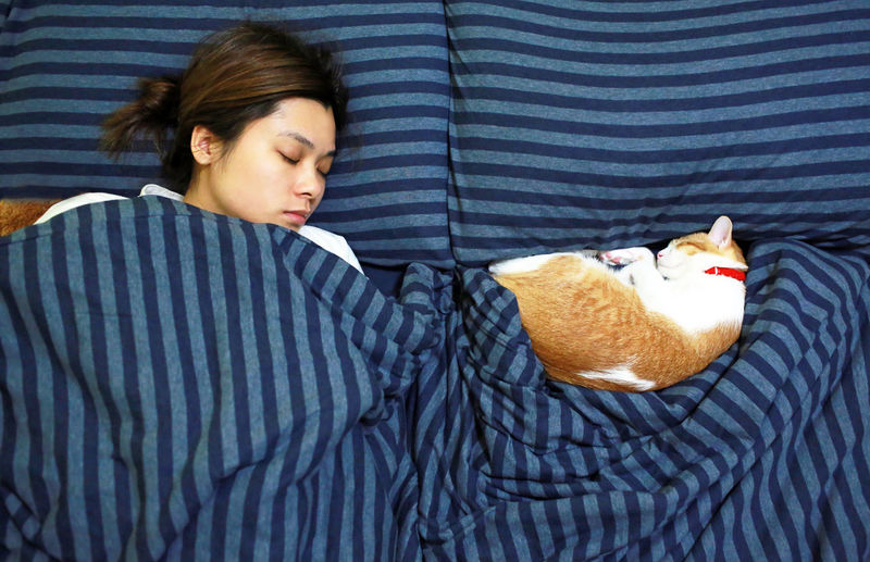 sleep with cat Bedtime Cats Of EyeEm Animal Themes Bed Bedroom Cat Cat Lovers Domestic Animals Domestic Cat Ginger Cat Indoors  Lazy Day One Animal One Person Pets Relaxation Sleeping Sleeping Cat Young Adult Cat Lover Love