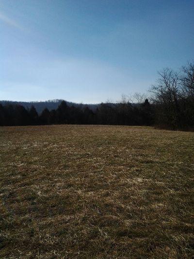 Worthville Ky Farm. Nature