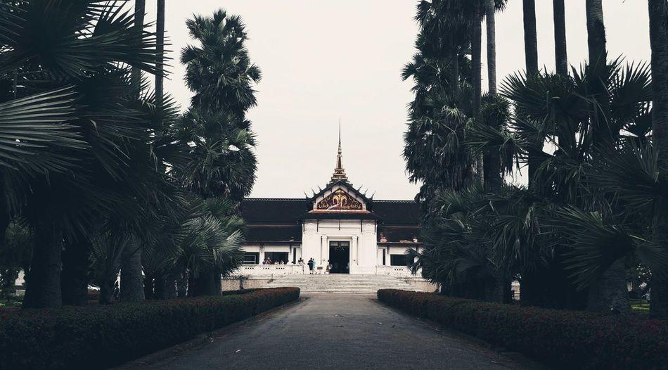 Footpath amidst trees leading towards temple