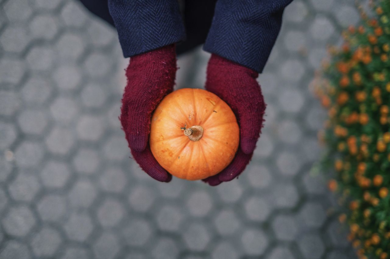 Cropped hands of person holding pumpkin on footpath