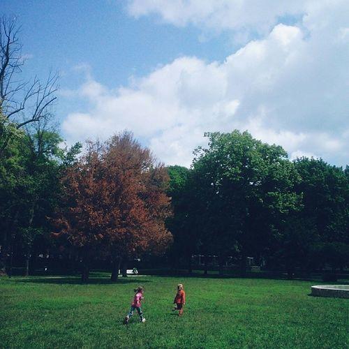 Run kids, run! Wwim9ro Timisoara Romania