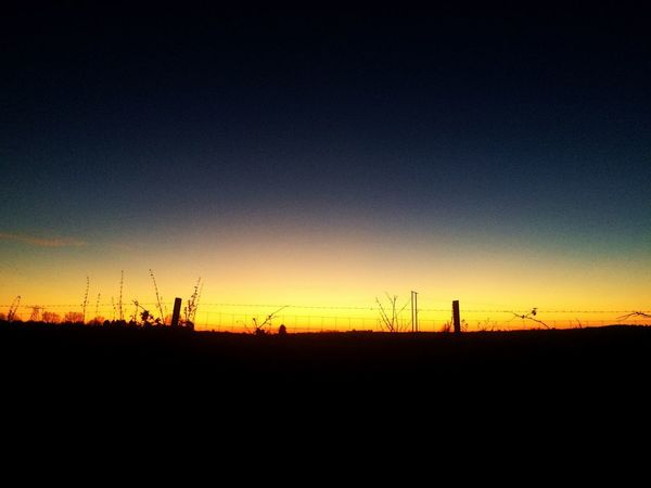 Nofliter Silhouette Sunset Nature Copy Space No People Landscape Tranquil Scene Field Outdoors Scenics Beauty In Nature Sky Clear Sky Electricity Pylon Day 2017 Eyeem Awards EyeEmNewHere Heavenly Sky Beauty In Nature EyeEm Beautiful Sky