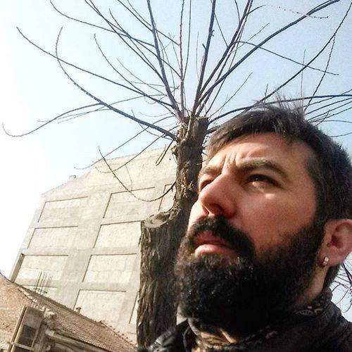 Günaydın Türkiye Artık çiçekleraçsın Böceklerötsün Ozaman