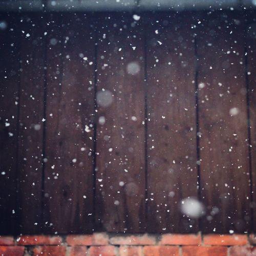 Enjoying The winterwonderland Snow Snowflake Winter Wonderland Winter
