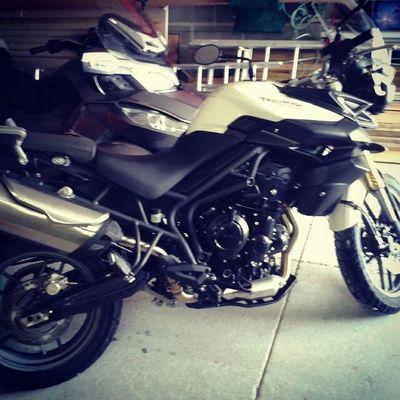 Ma nouvelle monture! :) Triumph Tiger 800cc British motorcycle