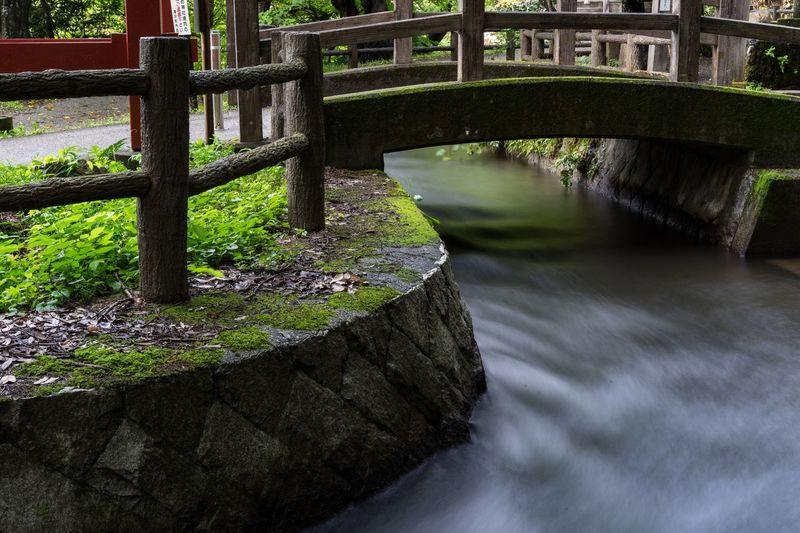 FUKUSHIMA Japan Tokyo Water Architecture Nature Built Structure No People Plant Bridge Growth Bridge - Man Made Structure Green Color River Connection Tranquility Travel Destinations Building Exterior Ornamental Garden Day Outdoors Tree Railing