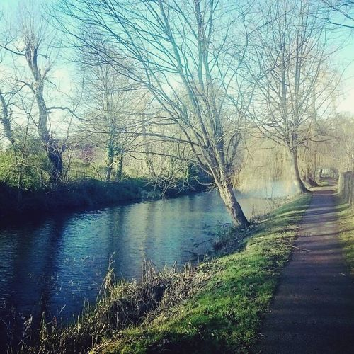 A winter canal walk, Brighouse Nature Tranquility Tranquil Scene Bare Tree Landscape Beauty In Nature No People Canal Yorkshire Sunny Winter Day Winter Walks