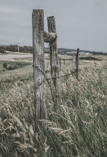 Close-up of wooden post on field against sky