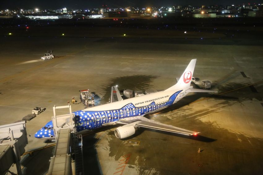 ジンベイジェット Jta 那覇 Okinawa OKINAWA, JAPAN Naha Illuminated Motion Transportation Night City Life City Water Travel Destinations Flying Tourism Vacations Outdoors Journey