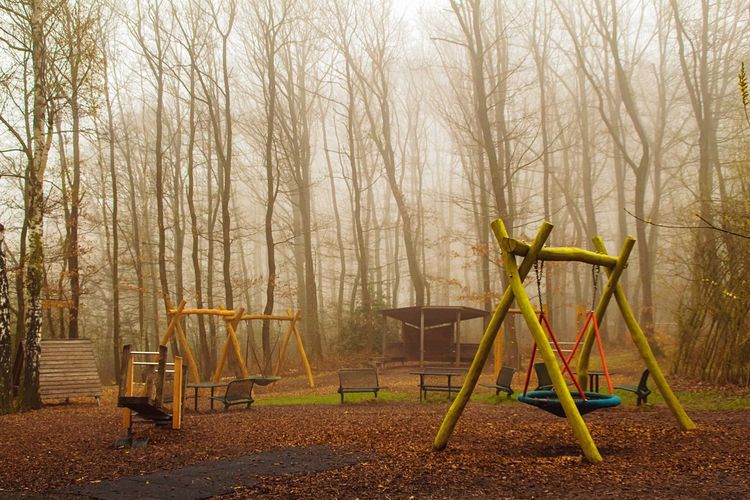 Playground and bare trees in forest during winter