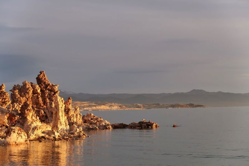 Landscape of tufa formations in Mono Lake at dawn Mono Lake Sunlight Tufa Sky Water Sea Beauty In Nature Tranquility Scenics - Nature Nature Solid Land Rock Outdoors Cloud - Sky Plant Rock - Object Beach No People Non-urban Scene Day Tranquil Scene