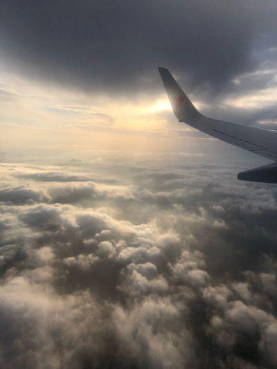 サンセットフライト☆ Skymark Airlines Skymark Cloud - Sky Airplane Air Vehicle Flying Sky Mode Of Transportation Transportation