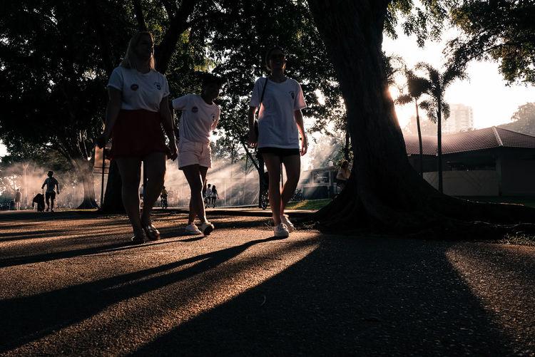 Rear view of people walking on road along trees