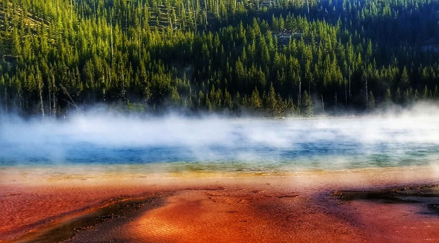 grand prismatic hot spring colors Yellowstonenationalpark Yellowstone Adventuretime Bewild Camping Backpacking Usnationalparks Grandprismatic Hotsprings Colors View Trip Traveljunk Travelstagram Travelblogger Exploring Neverstopexploring  Travel Photography Eyemphotography Landscape_Collection Eyem Hiking Eyem Gallery The Great Outdoors - 2018 EyeEm Awards Water Tree Hot Spring Mountain Multi Colored Forest Motion Sky Landscape Close-up Geyser Volcanic Landscape Steam Boiling Volcanic Activity