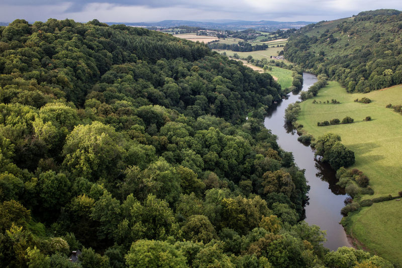 Symonds Yat Gloucestershire Forest Of Dean Nature_collection Landscape_collection EyeEmNatureLover Tree Beauty In Nature Scenics Tranquil Scene Nature Landscape High Angle View Forest Water River Non-urban Scene Lush Foliage
