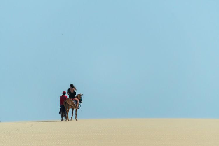 Woman riding horse on desert against clear sky