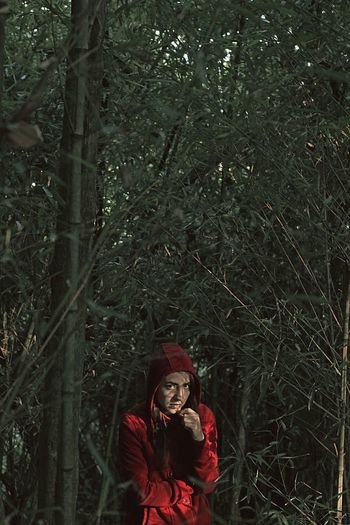 Woman Tumblrgirl Girl Bamboo Forest Bamboo Tree... Canon Amateur In The Forest Mexico Xalapa A Walk In The Woods Amateurphotography Woodwork  Woodporn Bamboo Wood Canonphotography Bamboo Art Portrait Of A Woman TumblrMexico City Dress Sun Sunshine Light