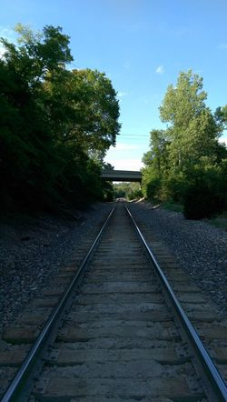The Purist Vanishing Point Underneath The Bridge Leavin' On A Southern Train Sunlight And Shadow Electrick Trees And Sky Feel The Journey
