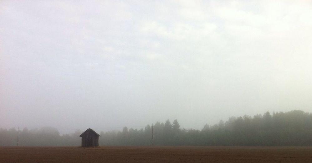 morning must over the fields EyeEm Nature Lover Eyem Misty Day Skwadras Little Barn Tadaa Community