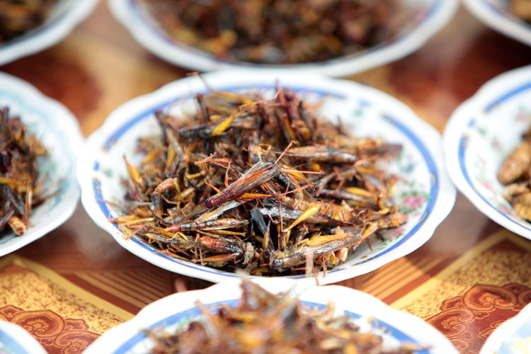 Close-Up Of Dead Insects For Sale On Market Stall