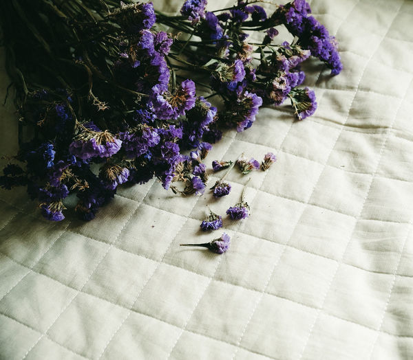 High angle view of purple flowers on table