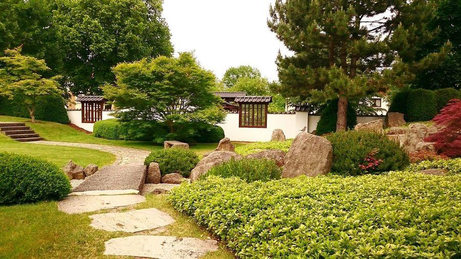 Japanischer Garten, Relaxing Nature Traveling Landscape Bad Langensalza
